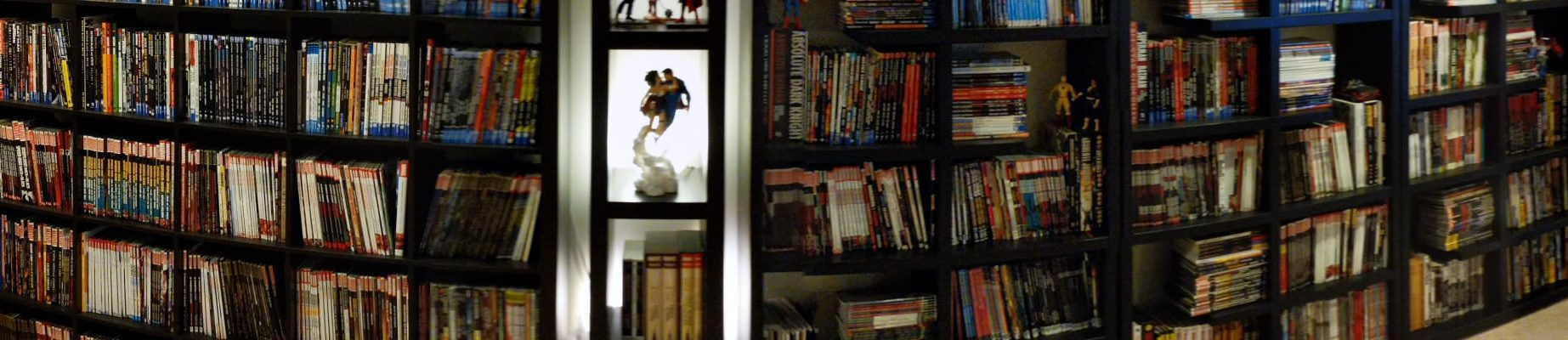 Comics Storage Guide